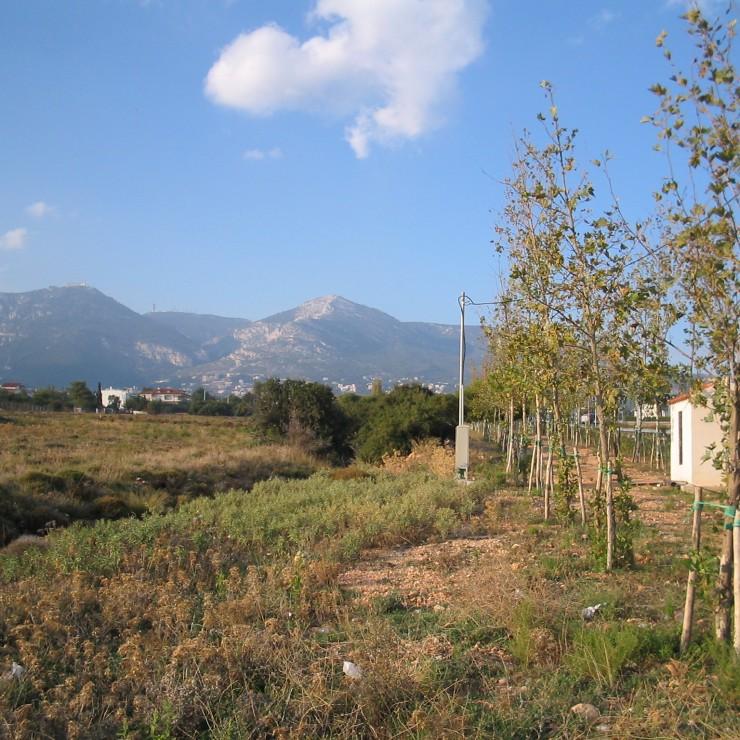 Ανάπλαση περιβάλλοντος χώρου και προσβάσεων Ολυμπιακού Χωριού στην Αθήνα